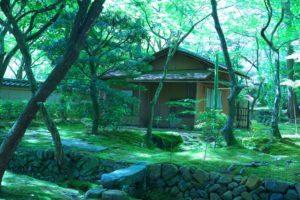 西芳寺・苔寺
